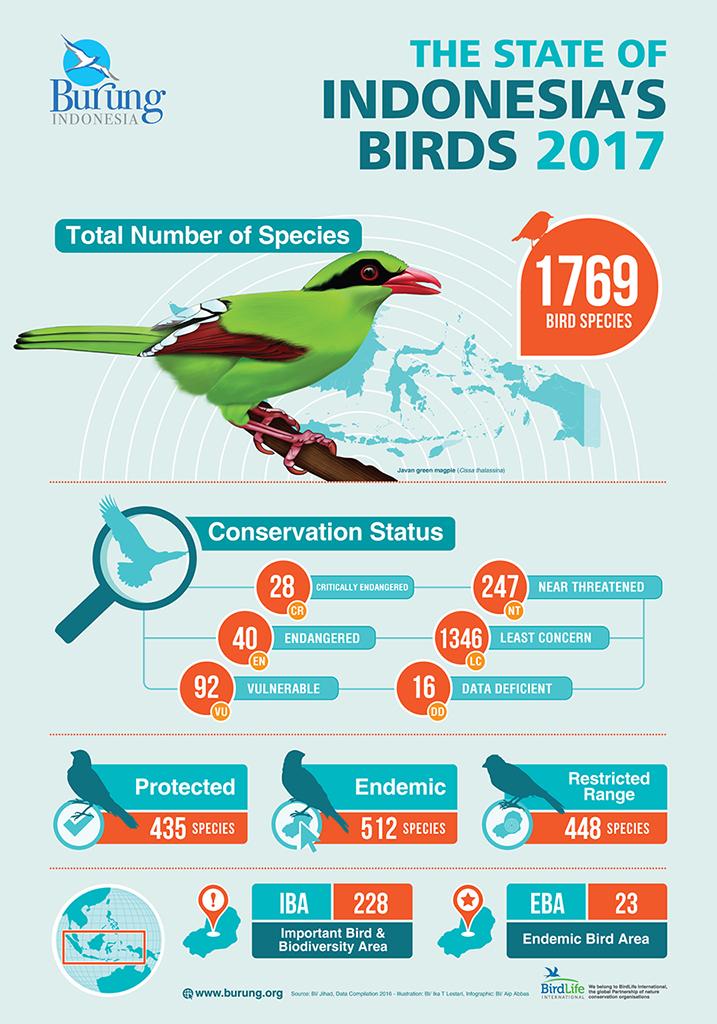 Infografis Status Keterancaman Burung di Indonesia 2017. Sumber: Burung Indonesia