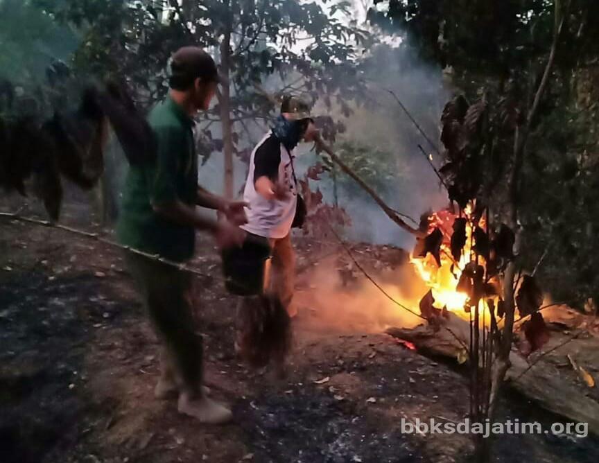 Api Hampir Lalap Bes